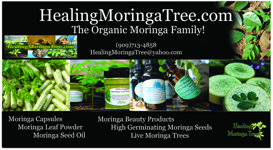 Brochures And Cards Moringa Trees For Sale Near Me Cbd
