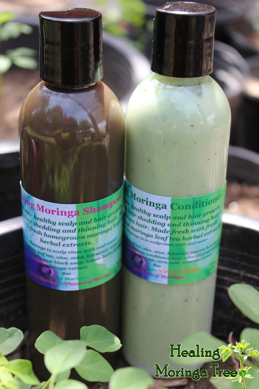 malunggay leaves as shampoo Choose from a large selection of malunggay brand filipino foods and purchase online worldwide shipping order today.